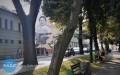 Mural poświęcony Irenie Sendlerowej